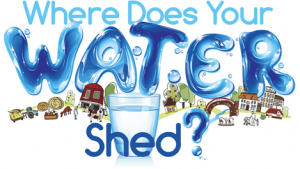 Where Does Your Water Shed